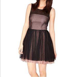 NWOT BETSEY JOHNSON Perfect Overlay Tulle Dress